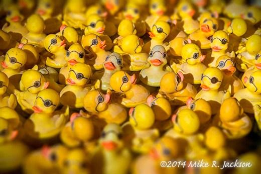 Rubber Duck Tilt Shift