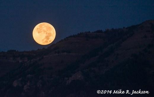 Moon Over Wilson