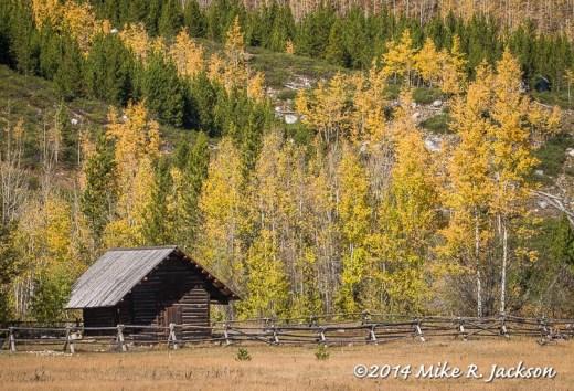 Cabin at Taggart Lake Trail Head