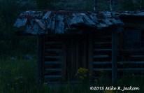 Cabin in the Dark