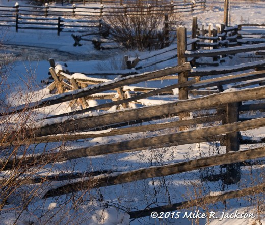 Fences and Corrals