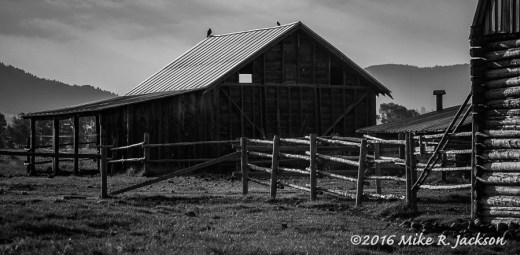 Barn and Fences