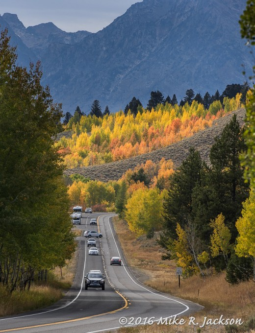 Oxbow Bend Roadway