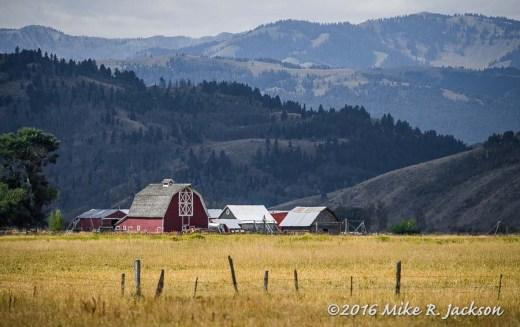 Jackson Hole Barns