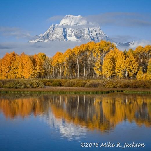Mt. Moran and Aspens