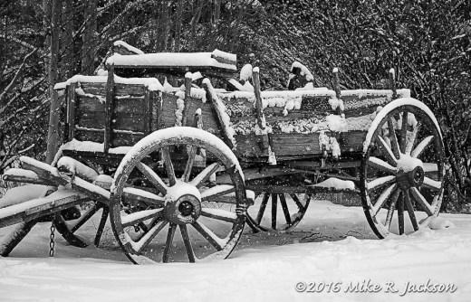 Hoback Wagon