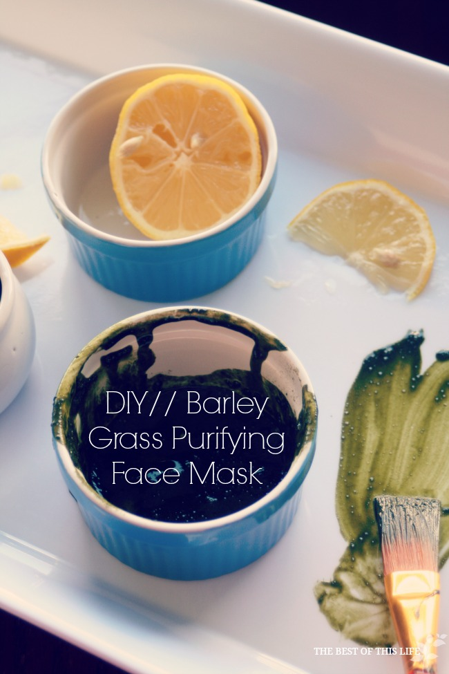 Baryley Grass Purifying Face Mask www.bestofthislife.com