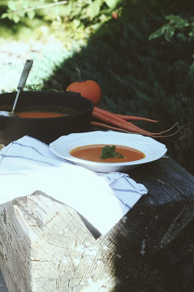 The Best Carrot Ginger Soup