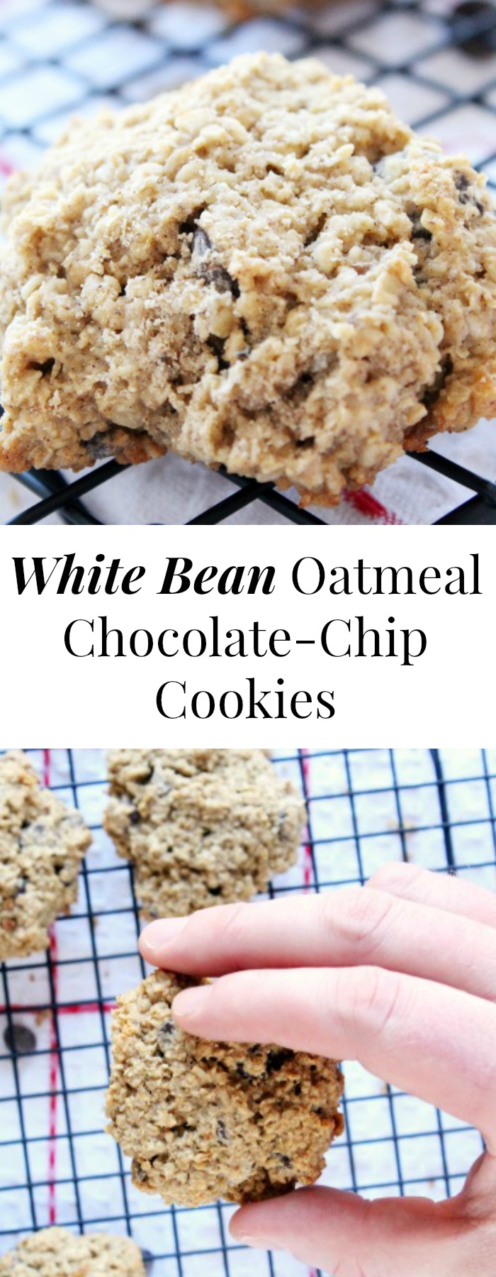 UntitledOatmeal Chocolate-Chip (and Bean!) Cookies Gluten-Free Healthy