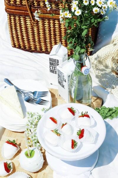 Diner En Blanc - White Dinner Ottawa bestofthislife.com