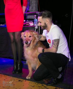 Paws-for-the-Cause-BestofToronto-2014-020