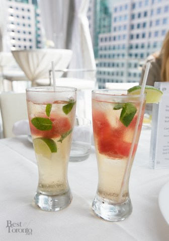 These watermelon mojitos were so nice we had them twice