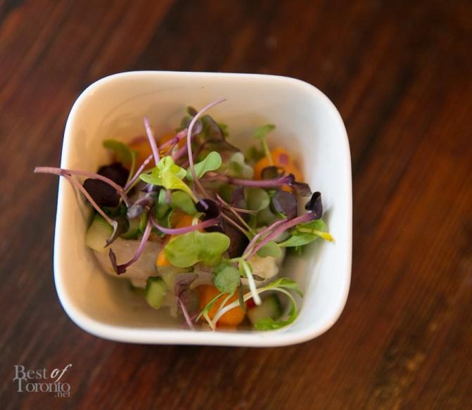 Corvina Ceviche - Maple Candied Sweet Potato, Celery & Lime Marinade, Cilantro, Cucumber, Red Onion - delicious!