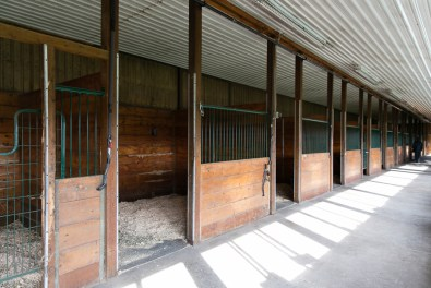 The horse stable