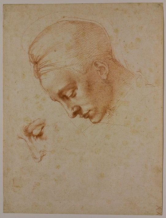 Michelangelo: Studies for the head of Leda