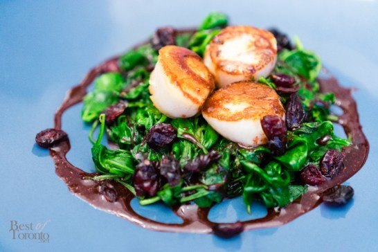 Pan seared scallops with baby spinach and spiced pomegranate