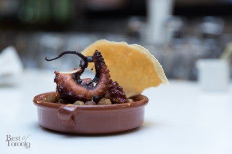 Grilled octopus with channa masala | Photo: Nick Lee