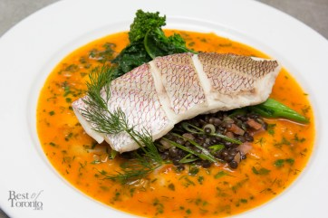 Steamed Portugese rockfish, tomato beurre blanc, fresh dill