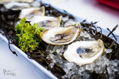 Fresh PEI oysters