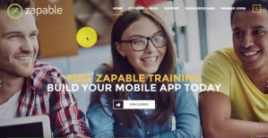 Zapable Training