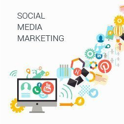 Alison Social Media Marketing