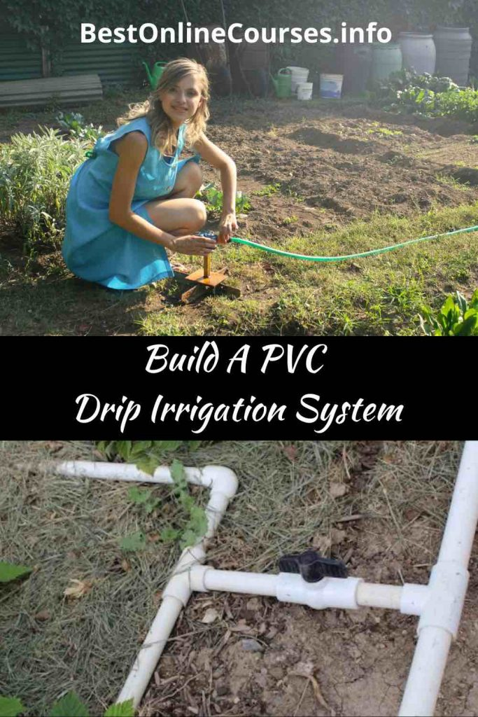 BestOnlineCourses-Build A PVC Drip Irrigation System