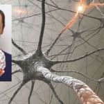 Neuroplasticity -How To Rewire Your Brain