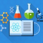 Master the Fundamentals of React as You Develop Applications