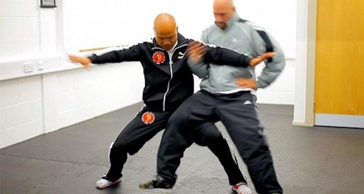 Tai Chi Combat