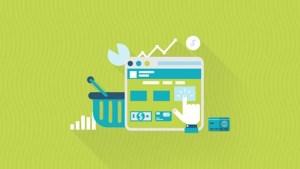 Udemy Ultimate eCommerce Optimization