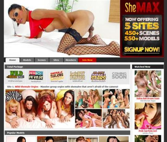 6 Top Shemale Porn Sites In Category