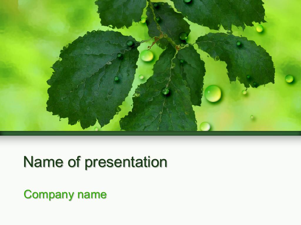 Microsoft Themes Powerpoint
