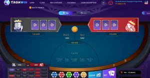 TRONWIN review: information and bonus on TRON casino
