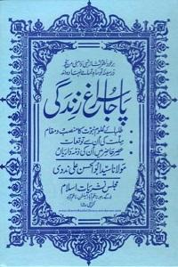 Paja Suragh e Zindagi By Maulana Syed Abul Hasan Ali Nadvi پاجا سراغ زندگی