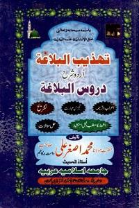 Tahzeeb ul Balagha Urdu Sharh Duroos ul Balaghah تھذیب البلاغہ اردو شرح دروس البلاغہ Pdf Download