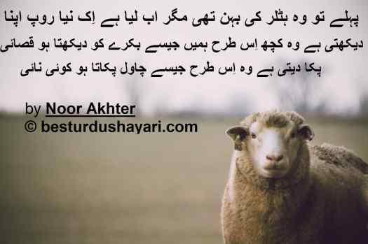 Funny Barka Eid Poetry