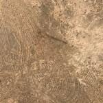 Lijmresten verwijderen en epoxy vochtscherm plaatsen Heerhugowaard