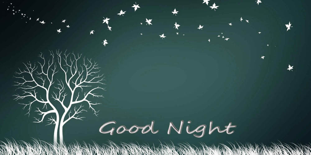 Good Night Messages In Hindi   Good Night SMS   Good Night WhatsApp Messages