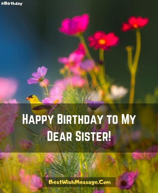 200 Happy Birthday Wishes For Sister Best Birthday Messages Quotes