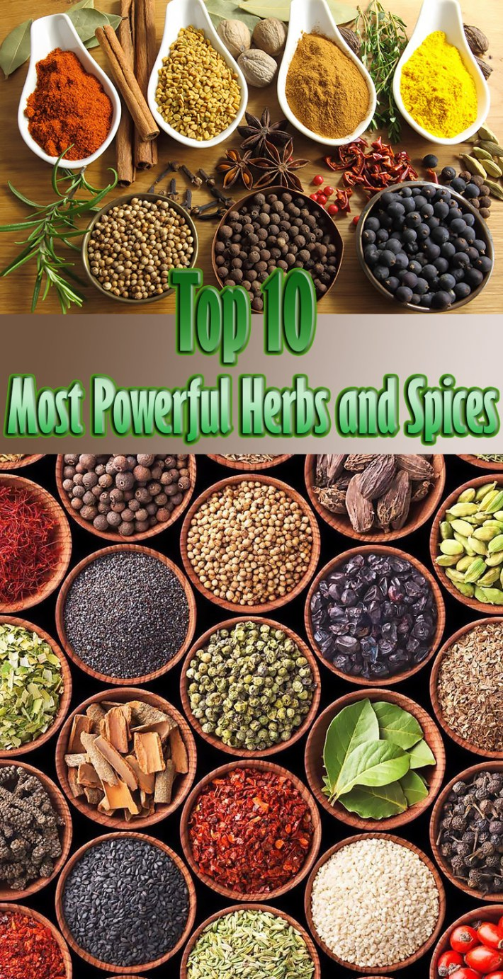 Top 10 Most Powerful Herbs and Spices