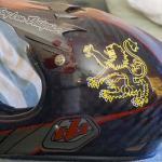 Lion Helmet sticker