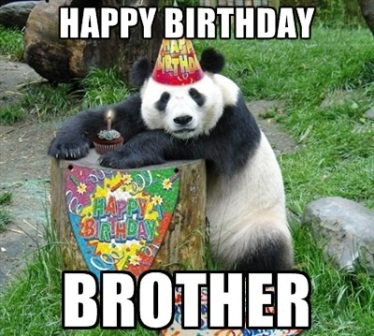 happy birthday meme panda