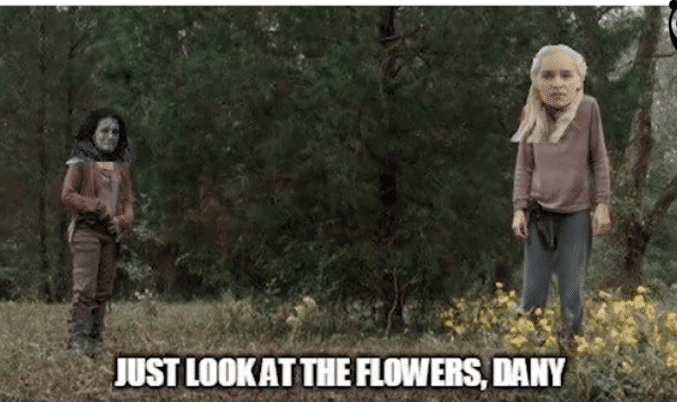 Game of thrones Just look at the flowers dany memes