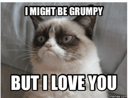 grumphy stll i love you meme