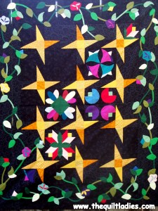 Garden under the stars quilt by the quilt ladies as shown on Beth Ann Doing