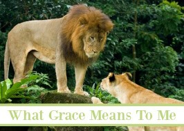 What Grace Means To Me; A Fallible Mom