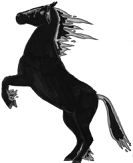 illustration of a horse reading on its hind legs