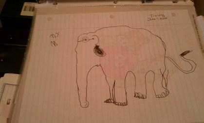 Leah's elephant
