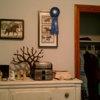 Horseback riding blue ribbon pictures