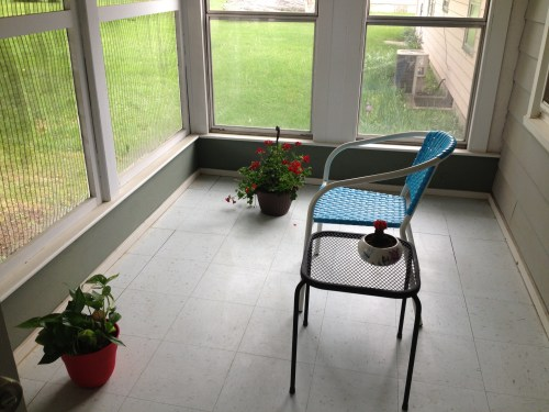 My sunroom: red geranium, green plant & red flowered cactus